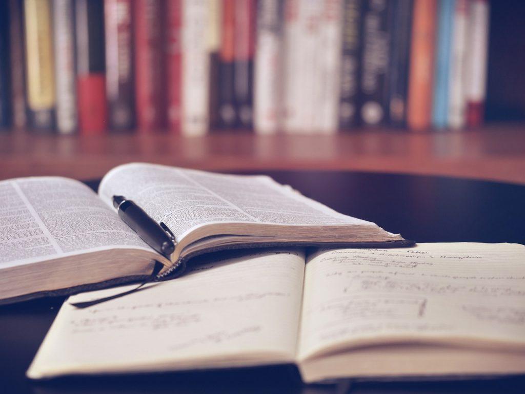 初心者は幅広く知識を身に付けることが重要
